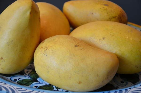 Mexican Mangos on sale at Whole Foods 5 for $5 and oh-so-ripe!
